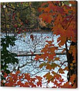 Fall On The Shetucket Acrylic Print