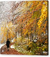 Fall Or Winter - Autumn Colors And Snow In The Forest Acrylic Print