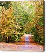 Fall Pathway Acrylic Print by Judy Vincent