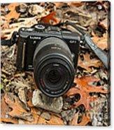 Fall Photography Acrylic Print