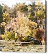 Fall Pond Acrylic Print