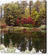 Fall Reflection And Colors Acrylic Print