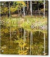 Fall Reflection In Yosemite 2 Acrylic Print