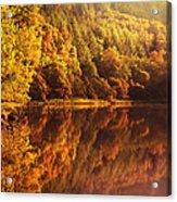Fall Reflections. Loch Achray. Scotland Acrylic Print