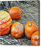 Fall Rejects Acrylic Print