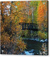 Fall River Acrylic Print by Dana Kern