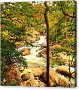 Fall River Running Acrylic Print