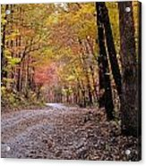 Fall Road Acrylic Print