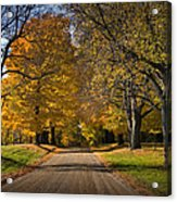 Fall Rural Country Gravel Road Acrylic Print