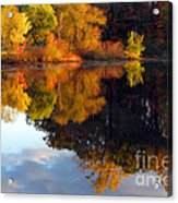 Fall Scene Acrylic Print by Olivier Le Queinec
