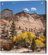Fall Season At Zion National Park Acrylic Print
