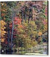 Fall Shoreline Acrylic Print