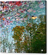 Fall Sky Acrylic Print