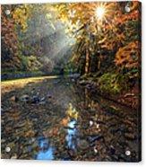 Fall Sparkle Acrylic Print by Pamela Winders