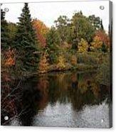Fall Splendor Acrylic Print