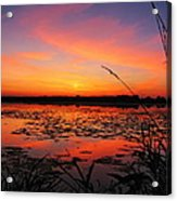 Fall Sunset In The Mead Wildlife Area Acrylic Print
