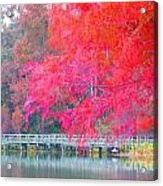 Fall Time  Acrylic Print