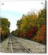 Fall Tracks Acrylic Print
