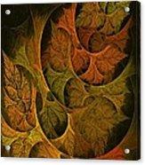 Fall Transitions Acrylic Print