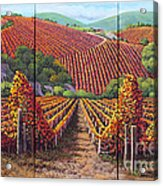Fall Vineyard Acrylic Print