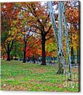 Fall Walk Acrylic Print
