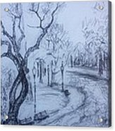 Fall2014-14 Acrylic Print by Vladimir Kezerashvili