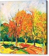 Fall2014-6 Acrylic Print