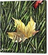 Fallen From Grace Acrylic Print