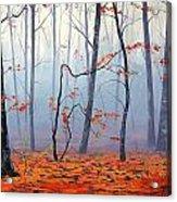 Fallen Leaves Acrylic Print by Graham Gercken