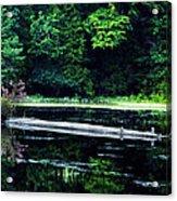 Fallen Log In A Lake Acrylic Print by Bill Cannon