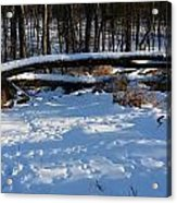 Fallen Tree Deertrails In Winter Acrylic Print