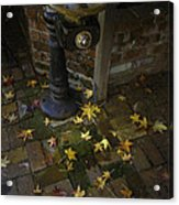 Falling At Your Feet Acrylic Print