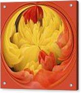 Falling Into A Flower Acrylic Print