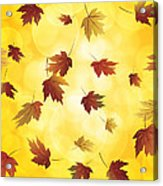 Falling Maple Leaves In Autumn Illustration Acrylic Print