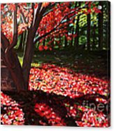 Falling Red Leaves Acrylic Print
