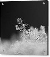 Falling Snowman Acrylic Print