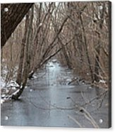 Falling Trees On A Frozen Canal Acrylic Print