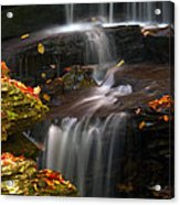 Falls And Fall Leaves Acrylic Print