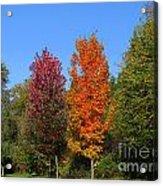 Falls Colours Acrylic Print