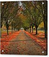 Fall's Driveway Acrylic Print