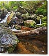 Falls On Blood Mountain Creek Acrylic Print