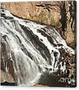 Falls On The Gibbon River In Yellowstone National Park Acrylic Print
