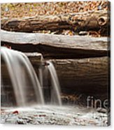 Falls Through A Tree Acrylic Print