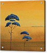 Famboyanes Azules Acrylic Print