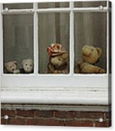 Family Of Teddy Bears On The Window. Acrylic Print by Kiril Stanchev