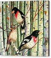 Family Trio Acrylic Print