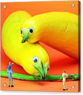 Family Watching Animals In Zoo Acrylic Print by Paul Ge