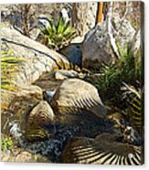 Fan Palm Leaves And Shadows Over Andreas Creek Rocks In Indian Canyons-ca Acrylic Print