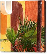Fan Palm On Patio Acrylic Print