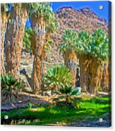 Fan Palms By The Creek In Lower Palm Canyon In Indian Canyons Near Palm Springs-california Acrylic Print